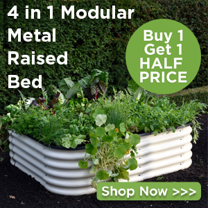 Metal Raised Beds