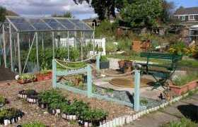 Allotment Guide for October
