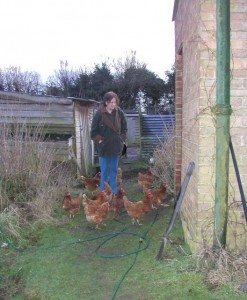 Val and the ex-battery hens