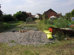 Ruined Allotment