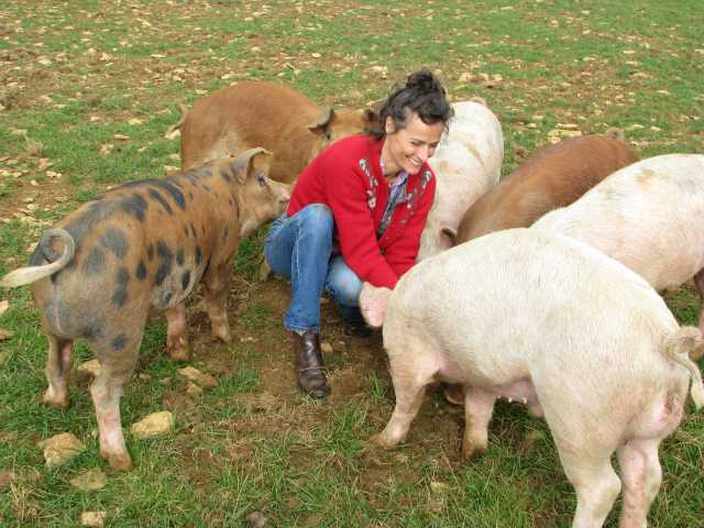 How Pig Farming Should Be