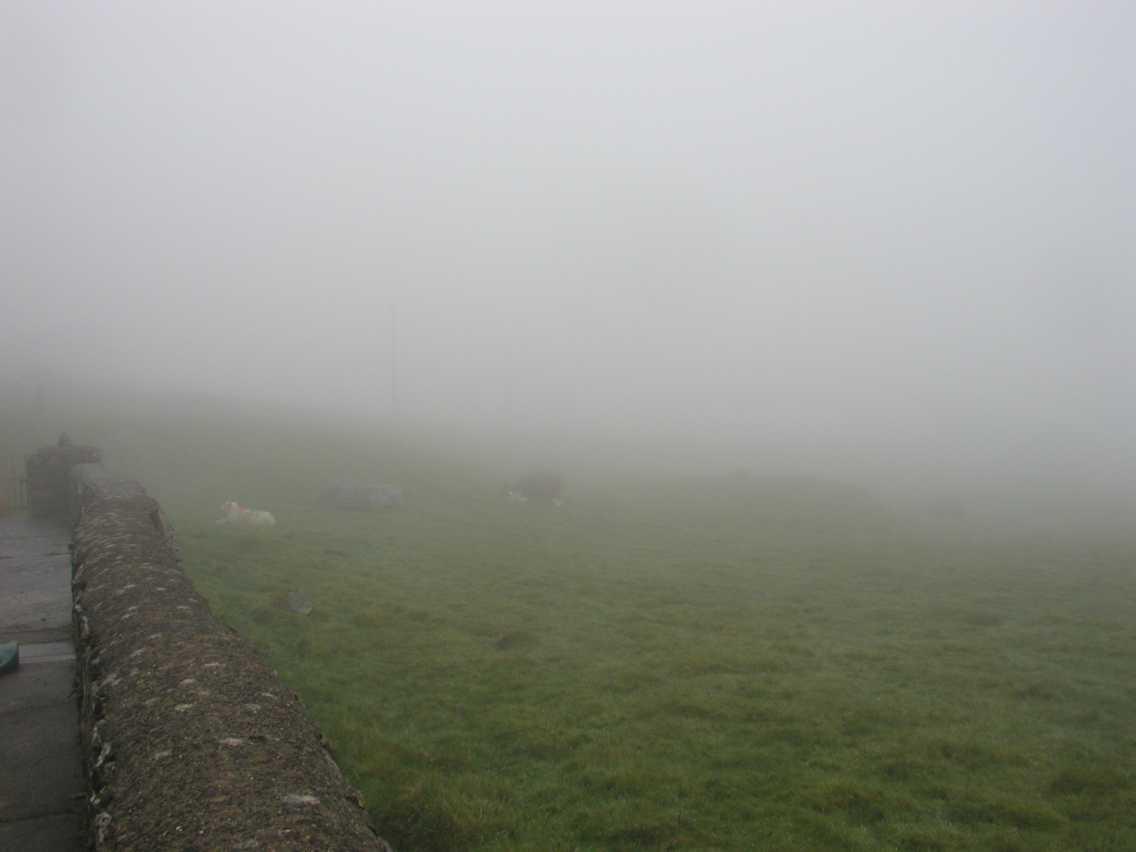 Low Cloud Mist