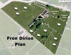 Fron Dirion Smallholding Plan