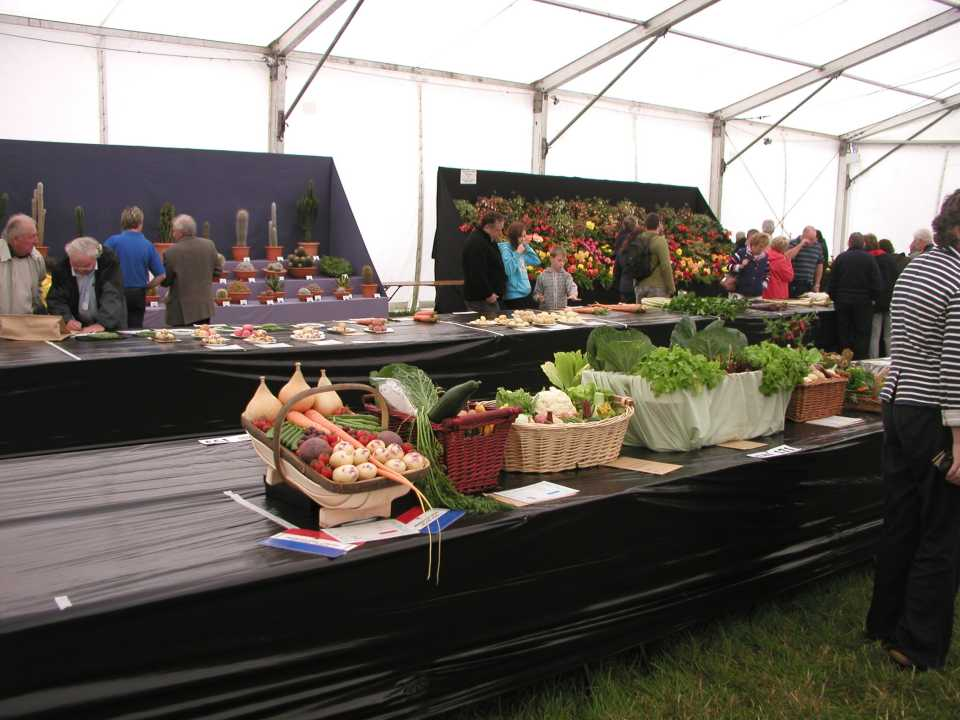 Horticultural Displays
