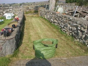 Sack of Lawn Thatch