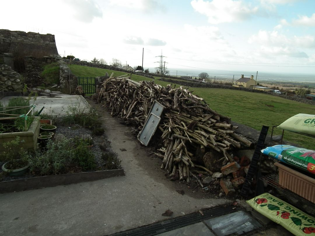 The Woodpile