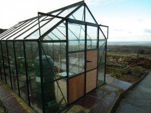 Greenhouse  Repaired