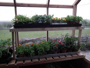 Potting Shed Rack