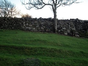 Repaired Dry Stone Wall