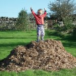 Woodchip Mountain Conquered