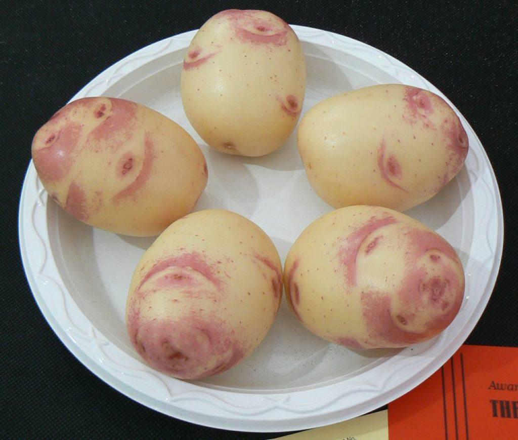 Show Potatoes