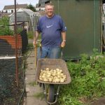John Harrison with potatoes on allotment