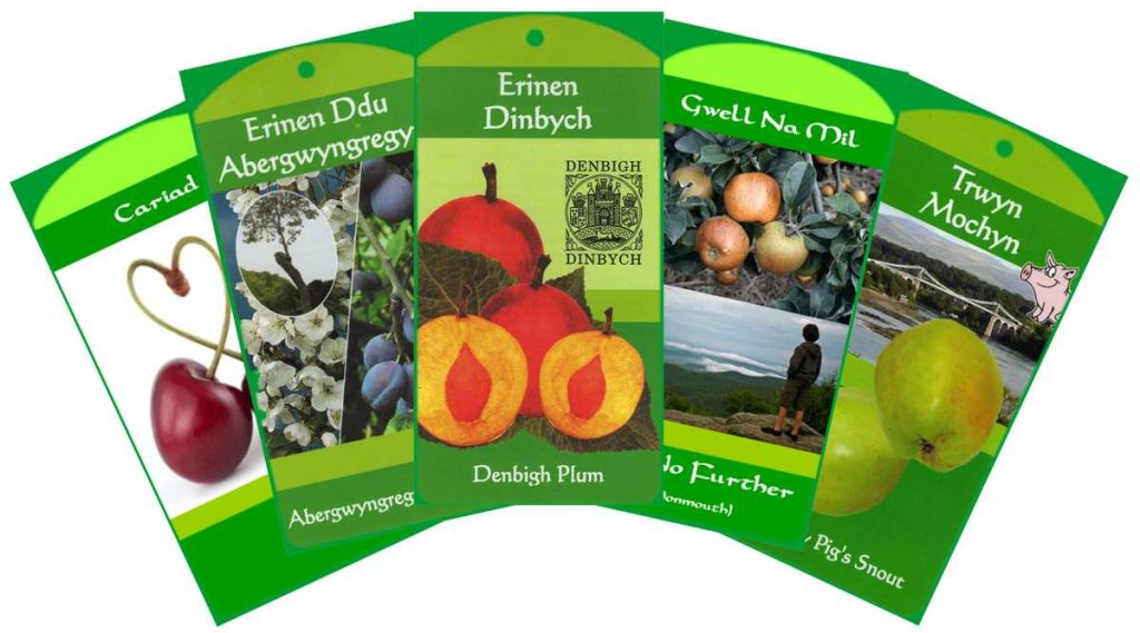 Heritage Welsh Fruit Trees