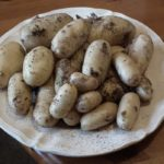New Potatoes