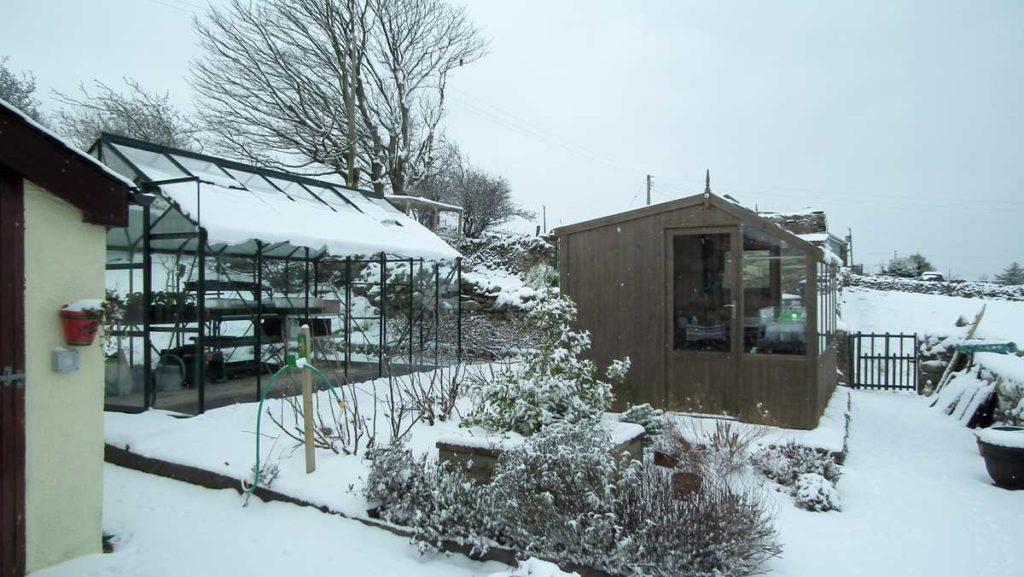 Shed Greenhouse Snow