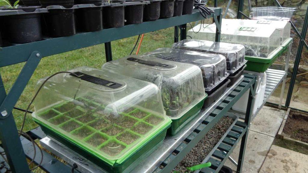 Propagators in Greenhouse