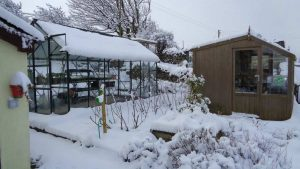 Snow on Shed and greenhouse