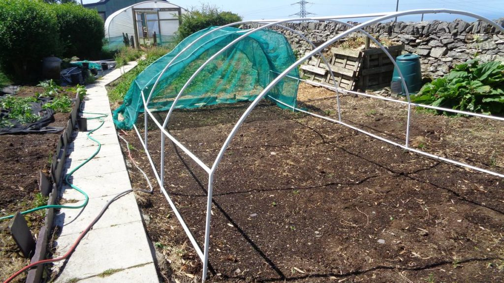Damaged Brassica Cage Frame
