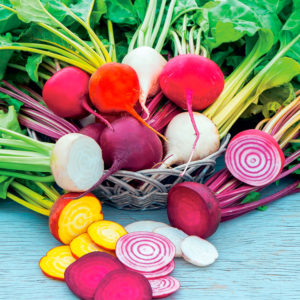 Coloured Beets Collection from Suttons