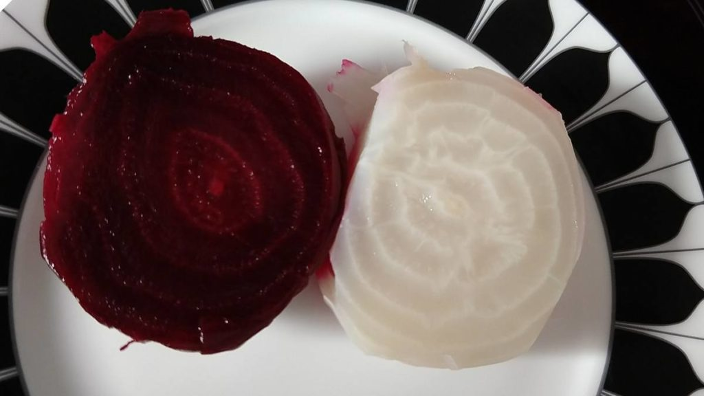 Red and White Beet Root