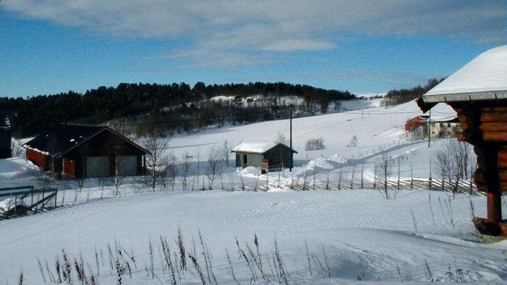 Farm Nr Roros Norway