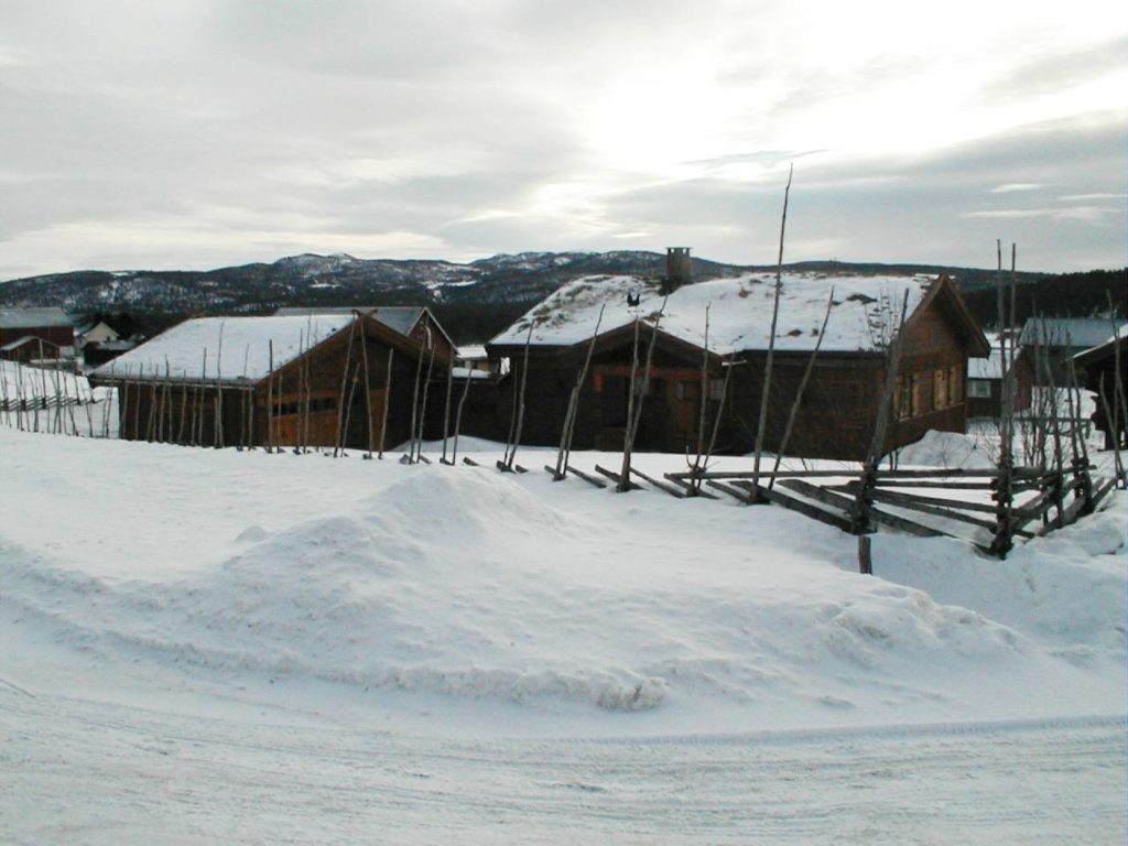 Snow Norway Skigard Fencing