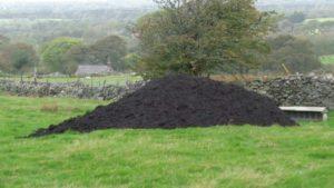 Compost Mountain