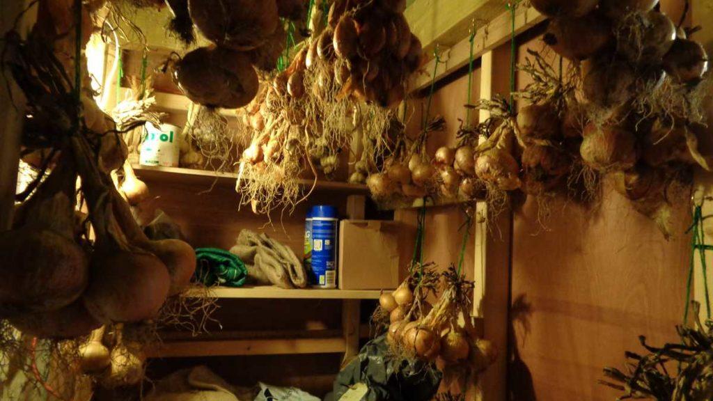 Onions Garlic Store