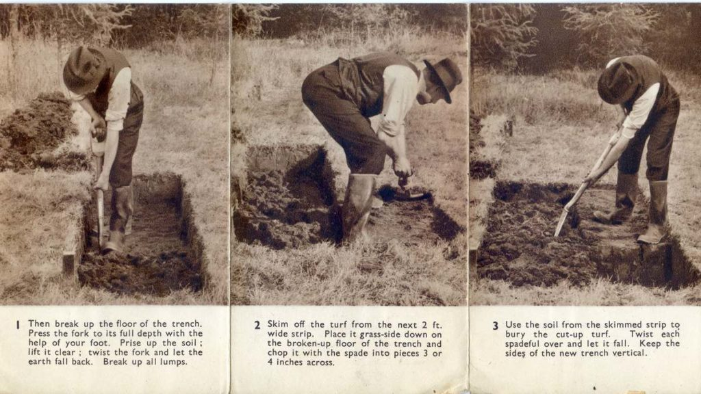 How To Dig