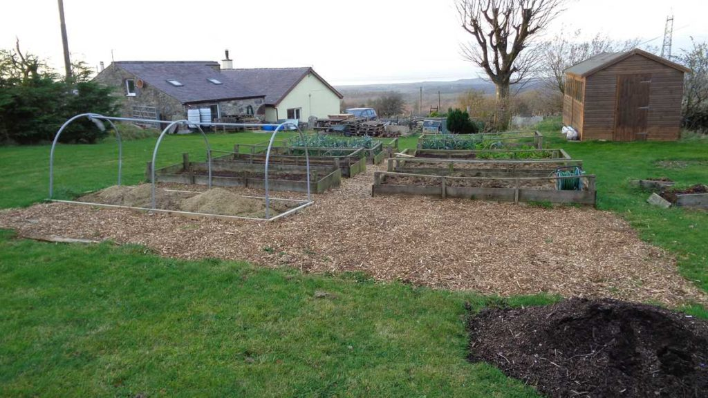 Raised beds in field plot
