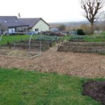 Raised beds in field plot