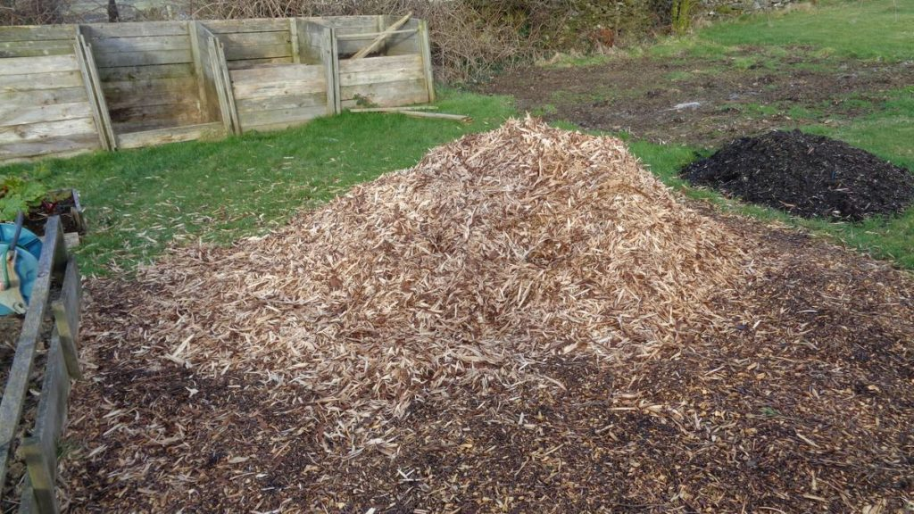 Pile of Bark Peelings Woodchips
