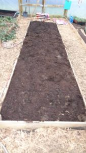 Polytunnel Centre Bed