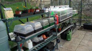 Greenhouse Propagators