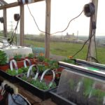 Potting Shed Propagators