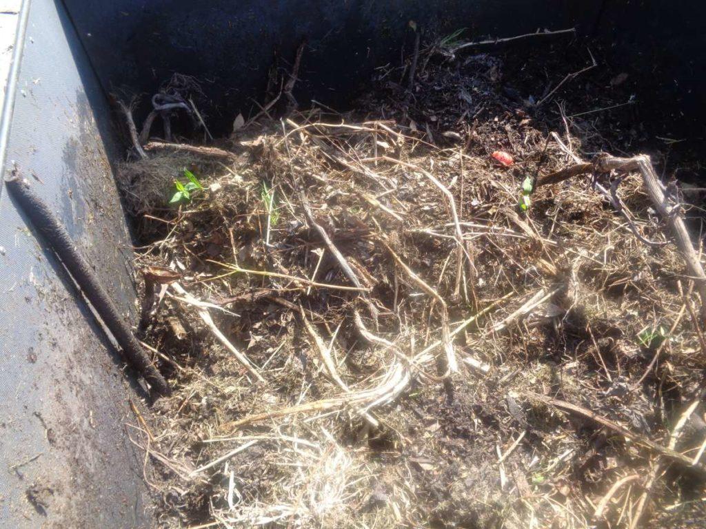 Refilling Compost Bin