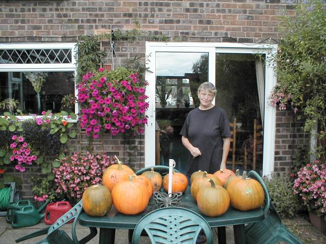 pumpkins ripening on table