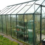 Vitavia Greenhouse