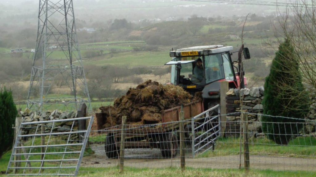 Sheep Muck Arrives