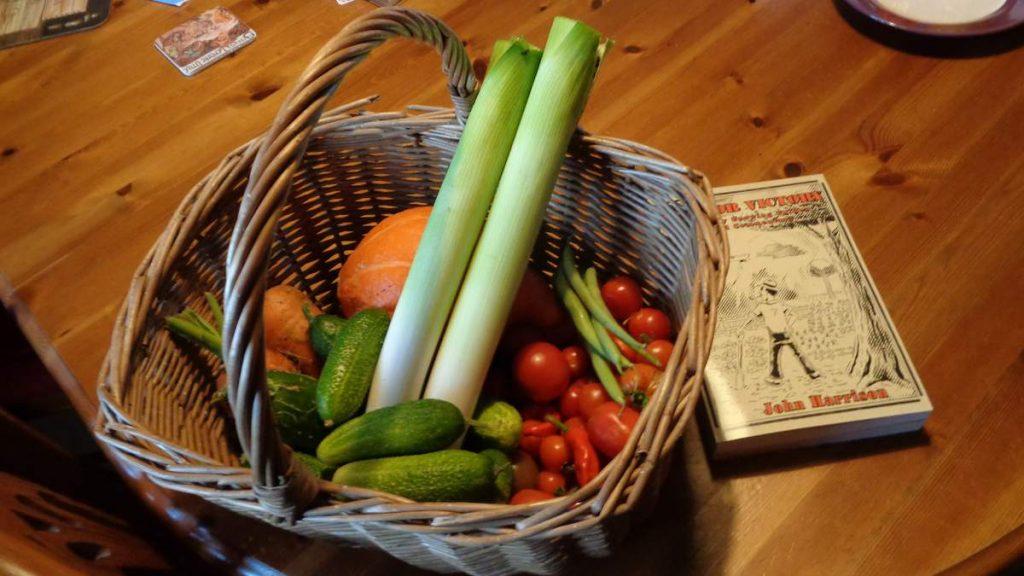 Basket of Harvested Vegetables