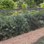 Harrod Horticultural Discount Voucher Code