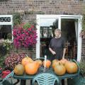 Pumpkins at home