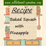 Baked Squash with Pineapple Recipe