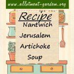 Nantwich Jerusalem Artichoke Soup