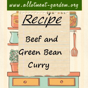 beef and green bean curry