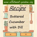 Buttered Cucumber with Dill Recipe