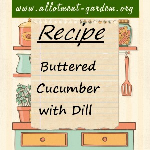 buttered cucumber with dill