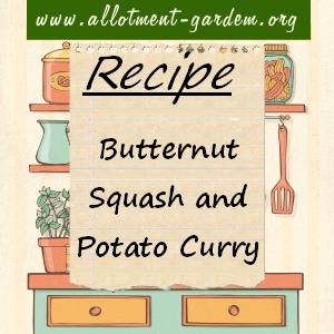 butternut squash and potato curry