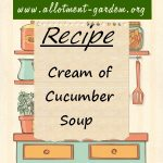 Cream of Cucumber Soup Recipe