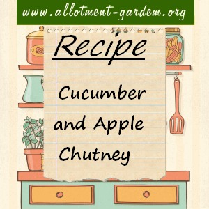 cucumber and apple chutney